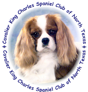 Cavalier King Charles Spaniel Club of North Texas Logo